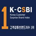 2013 고객감동브랜드 지수 1위